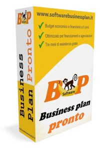 Business Plan Pronto
