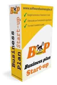 software business plan start up