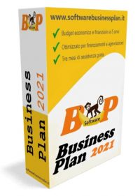 Software business plan 2021