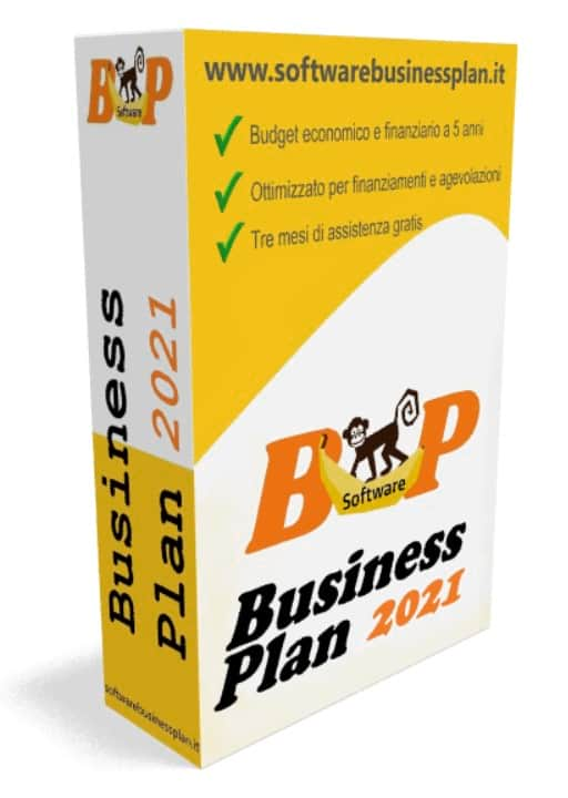 Software business plan 2021