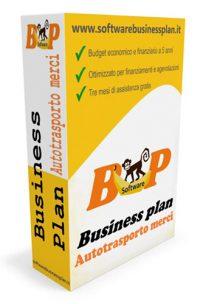 Business plan autotrasporto merci