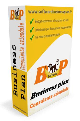 software business plan consulente aziendale