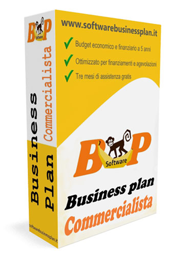 Business plan commercialista