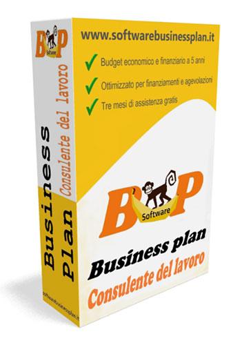 Business plan consulente del lavoro