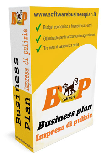 Business plan impresa di pulizie