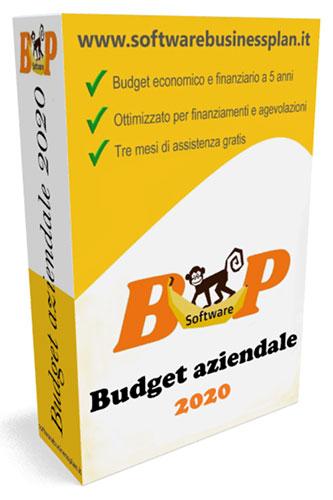 software budget aziendale 2020