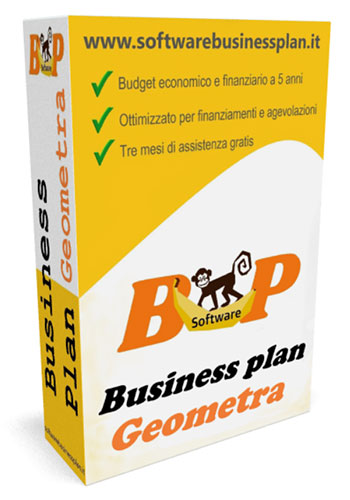 business plan geometra
