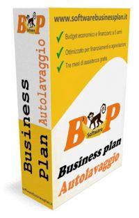 business plan autolavaggio