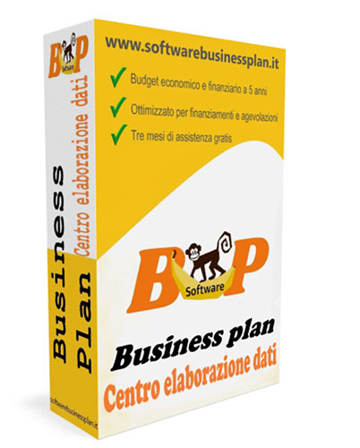 Business plan centro elaborazione dati